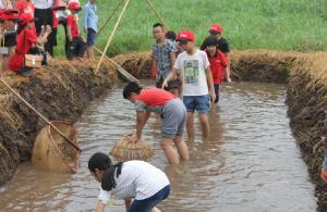 TOP địa điểm vui chơi cho bé không thể bỏ lỡ vào dịp nghỉ hè ở gần Hà Nội detrang farm2
